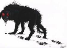 perro-rabioso[1]