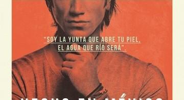 Alejandro Fernandez-Hecho en Mexico