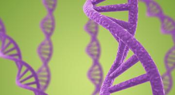 Moléculas de ADN.